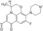 Chloramphenicol drug study